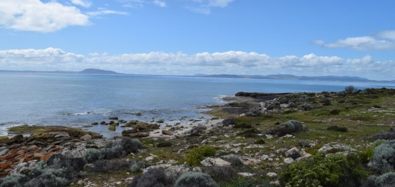 Coffin Bay – What a great place
